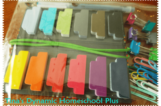Curriculum Planner Organized Copy thumb Curriculum Planner Must Haves