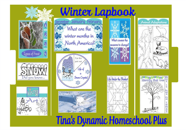 Winter Lapbook examples