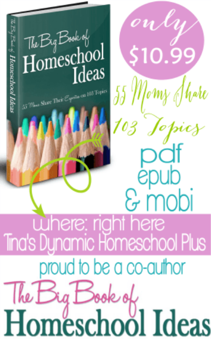 Big Book of Ideas Side Bar and Footer thumb 5 Days of Clever DIY Hacks for Your Homeschool Spaces Day 5 Things the Teacher Luvs
