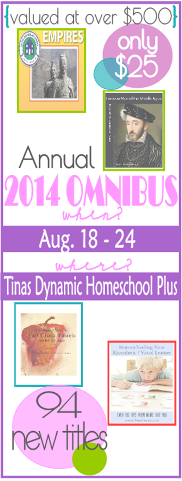Omnibus Sidebar Widget August 1 thumb 5 Days of Clever DIY Hacks for Your Homeschool Spaces Day 5 Things the Teacher Luvs