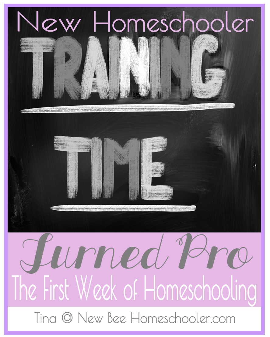 New Homeschooler Turned Pro the First Week of Homeschooling