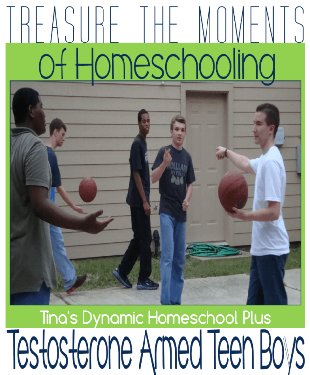 Treasure-the-Moments-of-Homeschooling-Testosterone-Armed-Teen-Boys.png