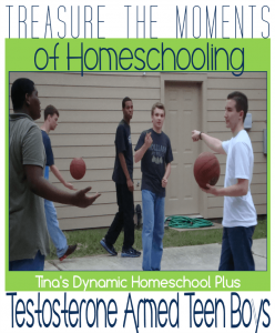 Treasure the Moments of Homeschooling Testosterone Armed Teen Boys
