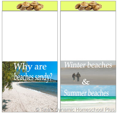 Beaches @ Tina's Dynamic Homeschool Plus