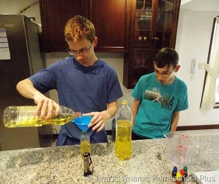 DIY Lava Lamp 3