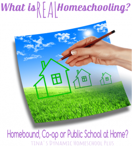 What is REAL Homeschooling @ Tina's Dynamic Homeschooling Plus