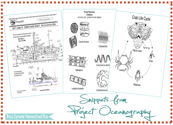 Free Downloads from Project Oceanography @ Tina's Dynamic Homeschool Plus