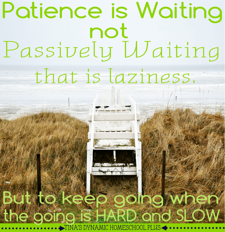 Patience (not skill) is the secret to sticking to homeschooling @ Tina's Dynamic Homeschool Plus