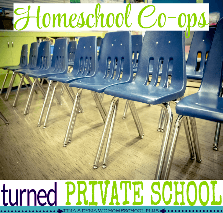 Homeschool Co-ops Turned Private School @ Tina's Dynamic Homeschool Plus