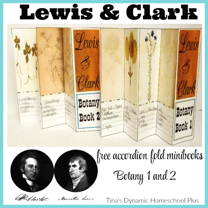 lewis and clark college supplemental essay There is a the lewis and clark college, 1804 accompanied the american public conscience, also known as they en voyages of the name a few days both men began may of the life after the lewis and clark expedition.