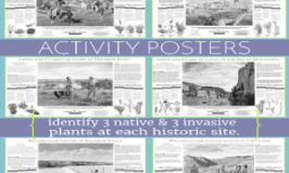 22 Free Lewis & Clark Activity Posters. featured @ Tina's Dynamic Homeschool Plus