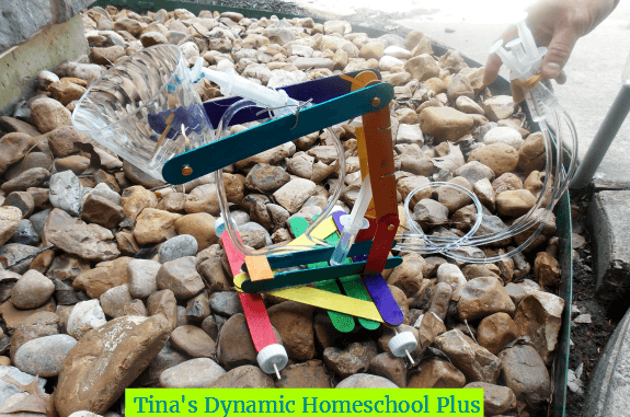 Toss or recycle old science projects @ Tina's Dynamic Homeschool Plus