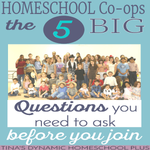 homeschool-co-op-the-5-big-questions-you-need-to-ask-300x