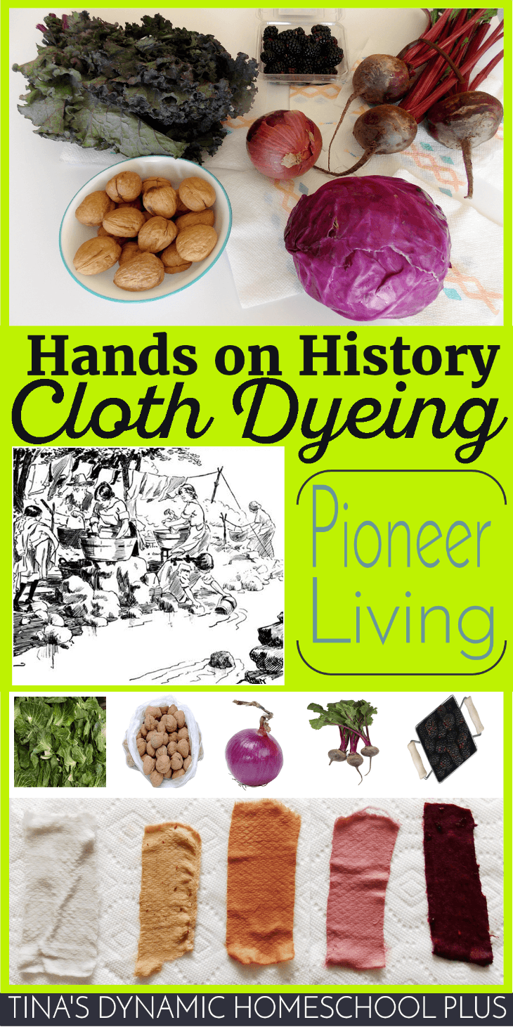 Hands-on History. Cloth dyeing has been used since ancient civilization through to frontier living @ Tina's Dynamic Homeschool Plus