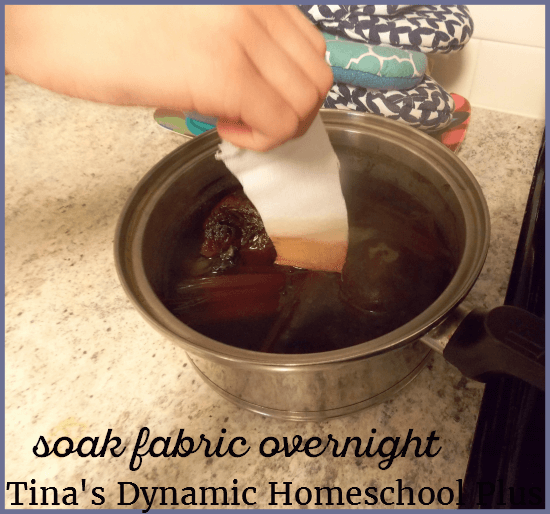 vegetables-fruits-and-nuts-are-used-for-natural-dyes-3-tinas-dynamic-homeschool-plus