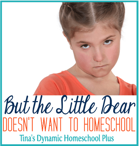 But the Little Dear Doesn't Want to Homeschool