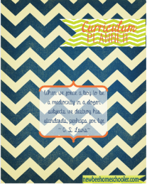 Navy Chevron g