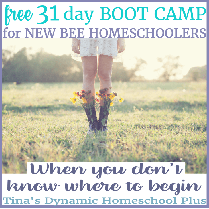 Free 31 Day Boot Camp for New Homeschoolers and resources. When you don't know where to begin.