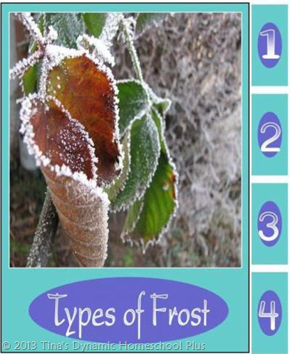 Types of Frost Minibook @ Tina's Dynamic Homeschool Plus