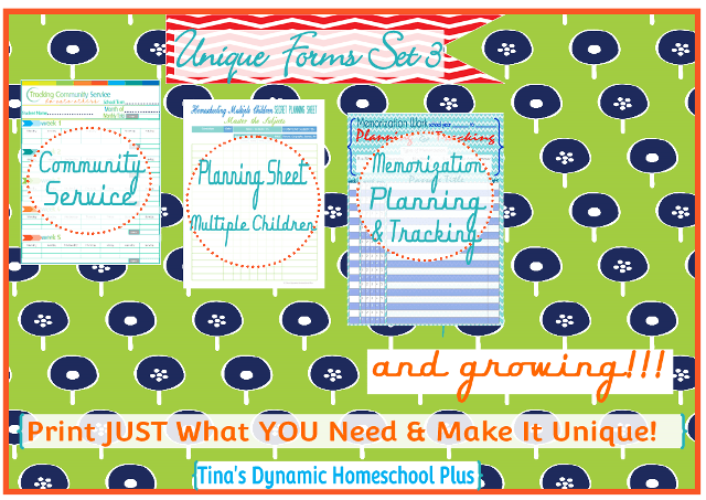 7 step homeschool planner