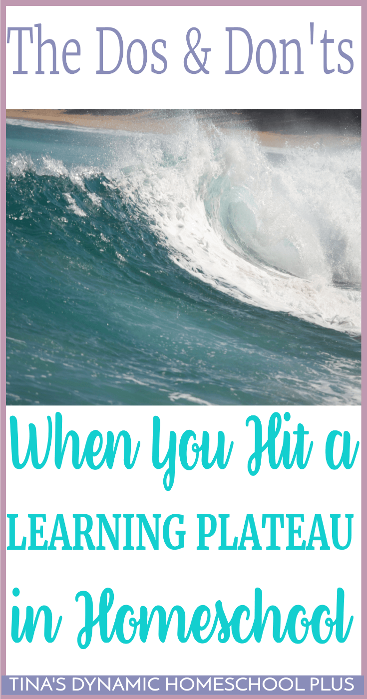 Are You Making these Mistakes When You Hit a Homeschool Learning Plateau? The stages of learning can be like the ocean. It can be churning and grinding and you can ride high on the swells and then it can dip down low and almost be motionless. Click here to grab some tried and true tips!