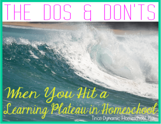 The Dos and Don'ts When You Hit a Homeschool Learning Plateau