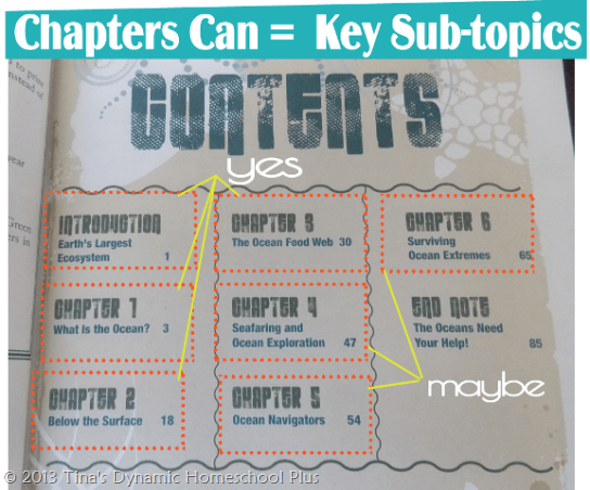 how to use a chapter book to prep unit study