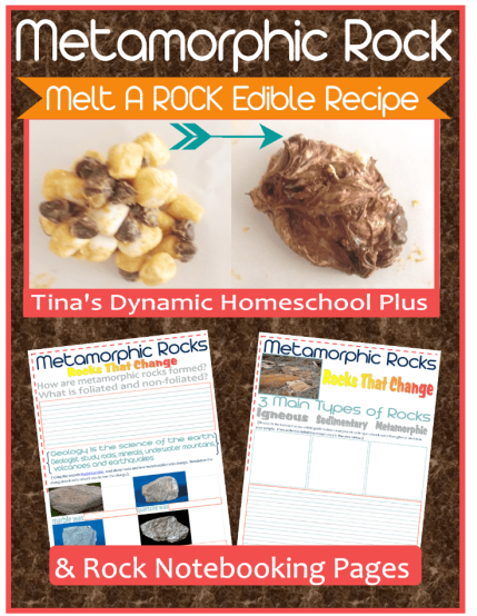 Metamporphic Rock and Notebooking Pages