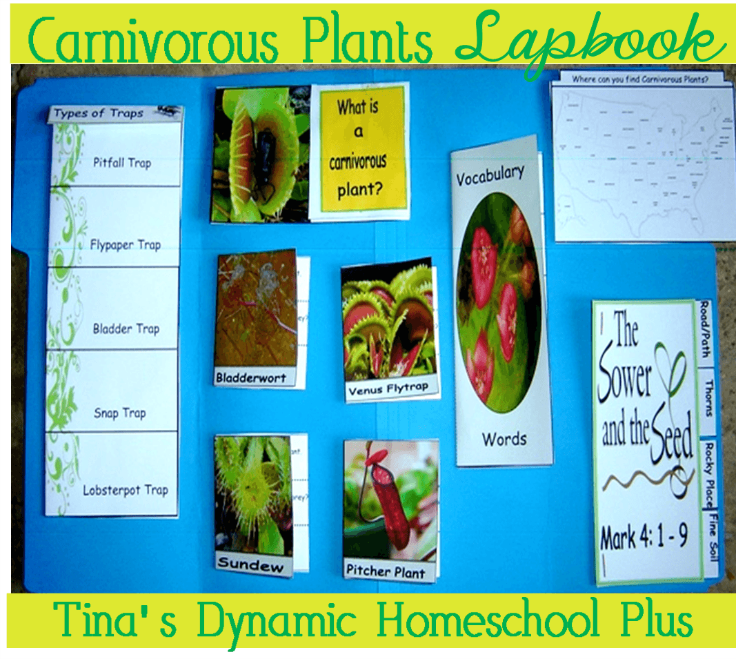 Carnivorous Lapbook @ Tina's Dynamic Homeschool Plus