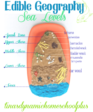 Edible Sea Level Geography Project @ Tina's Dynamic Homeschool Plus