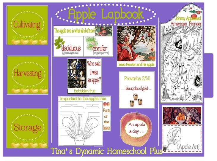 Free Apple Lapbook @ Tina's Dynamic Homeschool Plus
