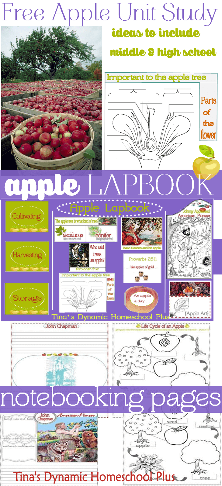 Fall Unit Study (Includes Apples, Sir Isaac Newton, Art, and Appleseed)