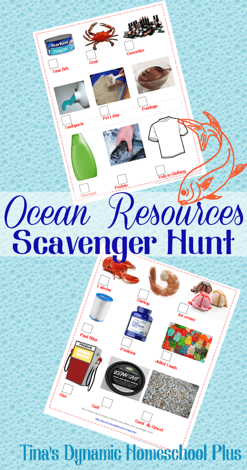 Ocean Resources Scavenger Hunt @ Tina's Dynamic Homeschool Plus