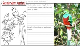Quetzal Importance to Maya