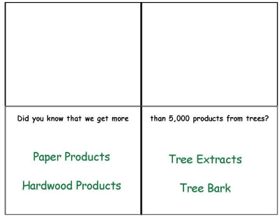 What do we get from trees 2