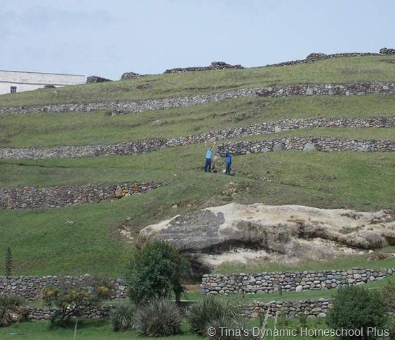 Incan Terraces