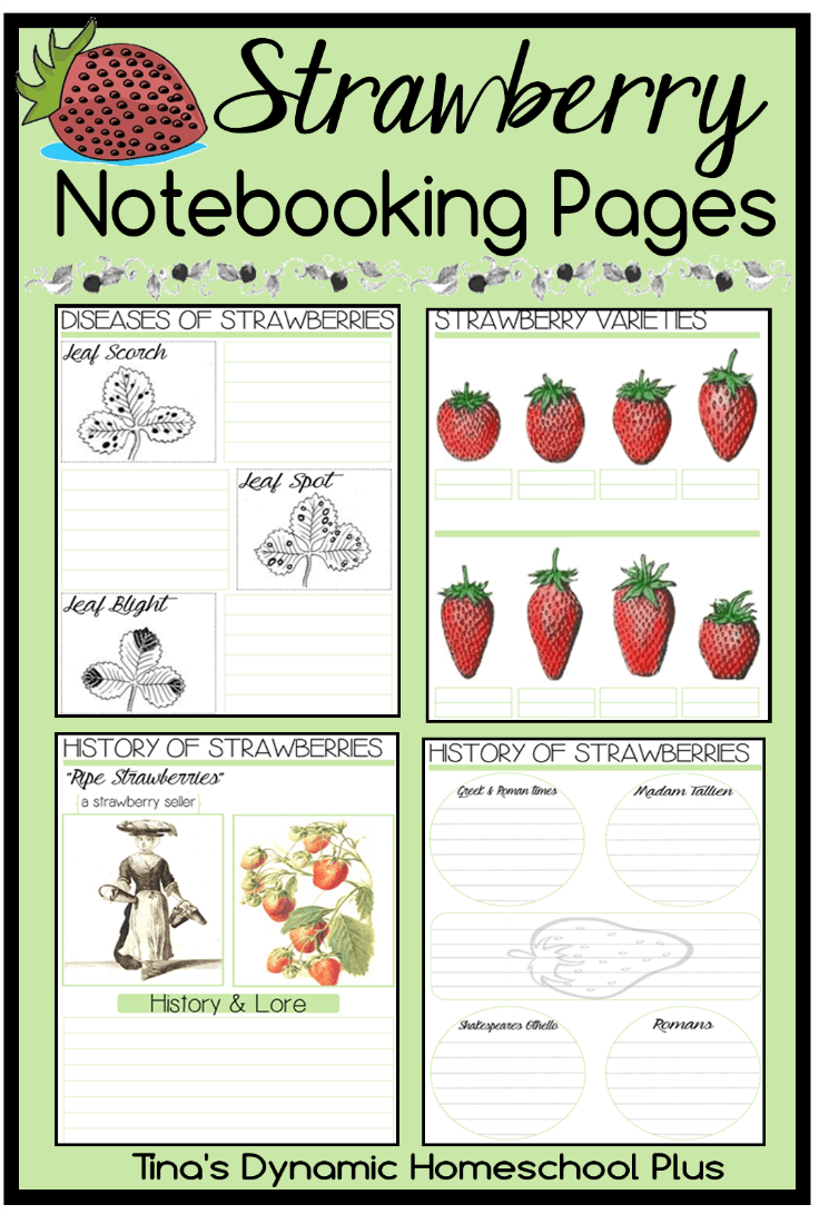notebooking Archives - Tina\'s Dynamic Homeschool Plus