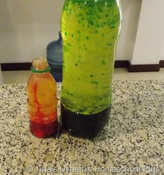 DIY Lava Lamp @ Tina's Dynamic Homeschool Plus