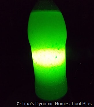 DIY Lava Lamp 8