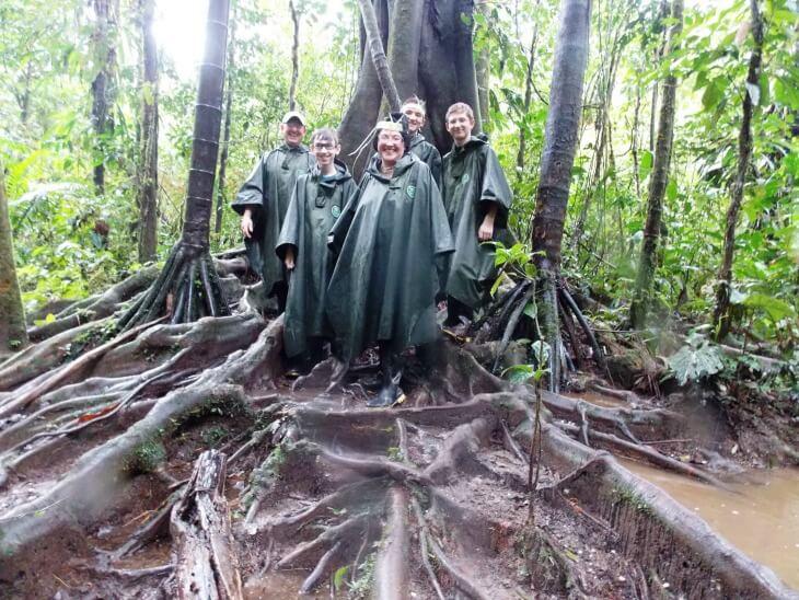 24 Amazon Tree
