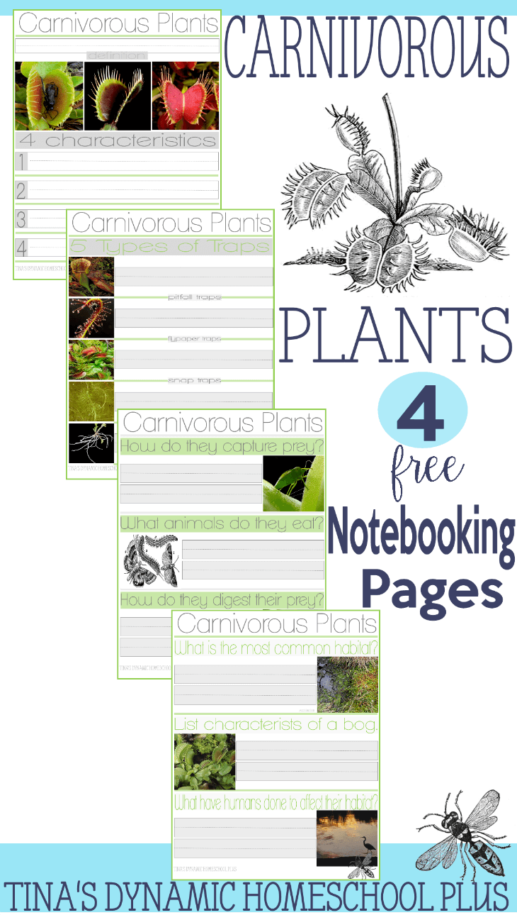 Carnivorous Plants Notebooking Pages @ Tina's Dynamic Homeschool Plus