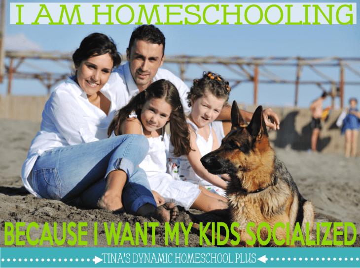I am Homeschooling Because I Want My Kids Socialized @ Tina's Dynamic Homeschool Plus