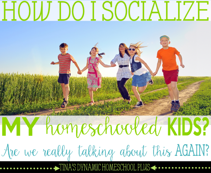 How Do I Socialize My Homeschooled Kids - Are We Really Talking About this AGAIN @ Tina's Dynamic Homeschool Plus