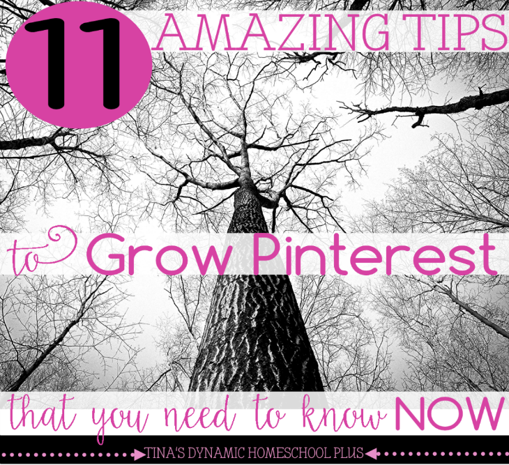 11 Amazing Tips to Grow Pinterest That You Need to Know NOW @ Tina's Dynamic Homeschool Plus