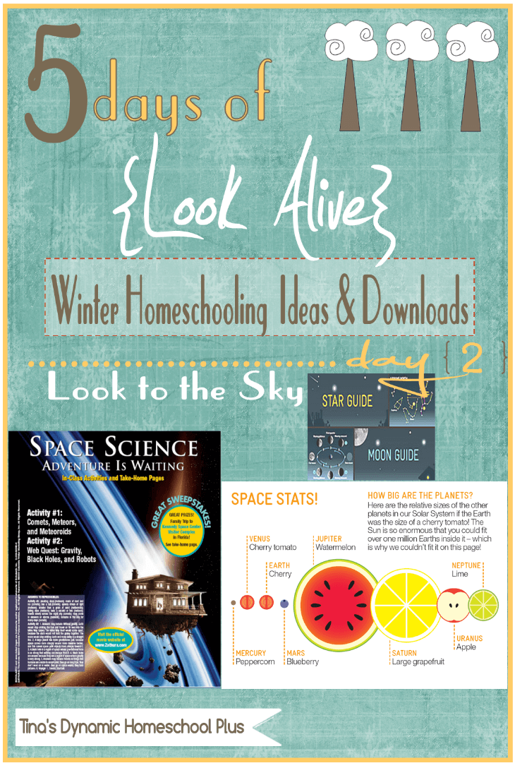 5 Days of Look Alive Winter Homeschooling. Day 2 Look to the Sky. Free Downloads & Activities @ Tina's Dynamic Homeschool Plus