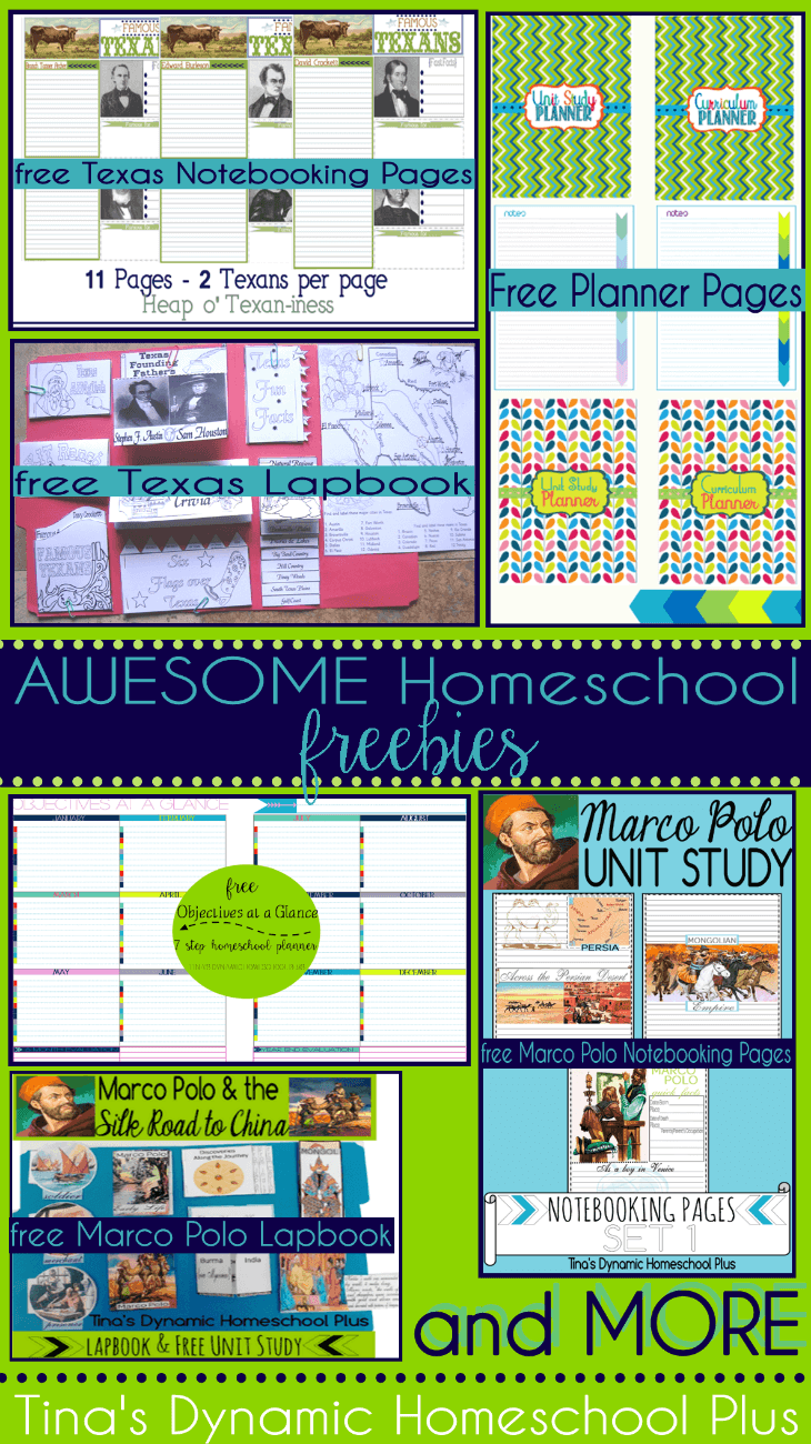 AWESOME Homeschool Freebies @ Tina's Dynamic Homeschool Plus