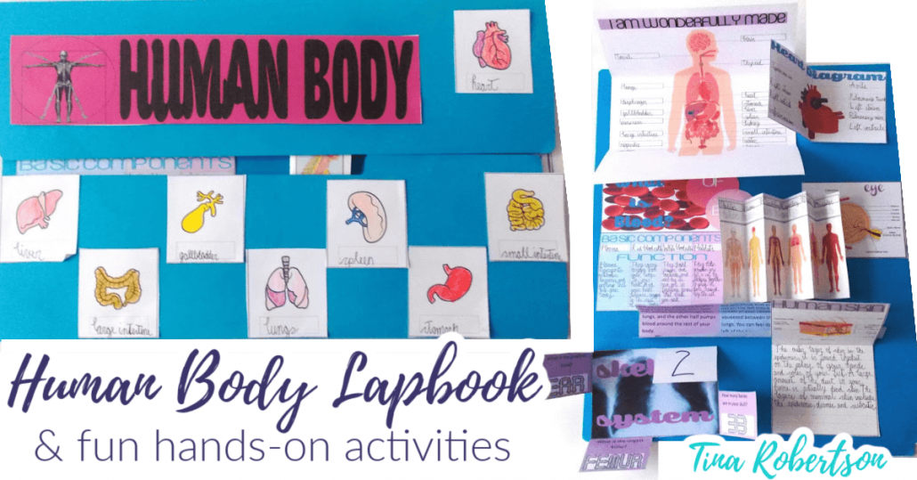 Beautiful Human Body Lapbook and Fun Unit Study