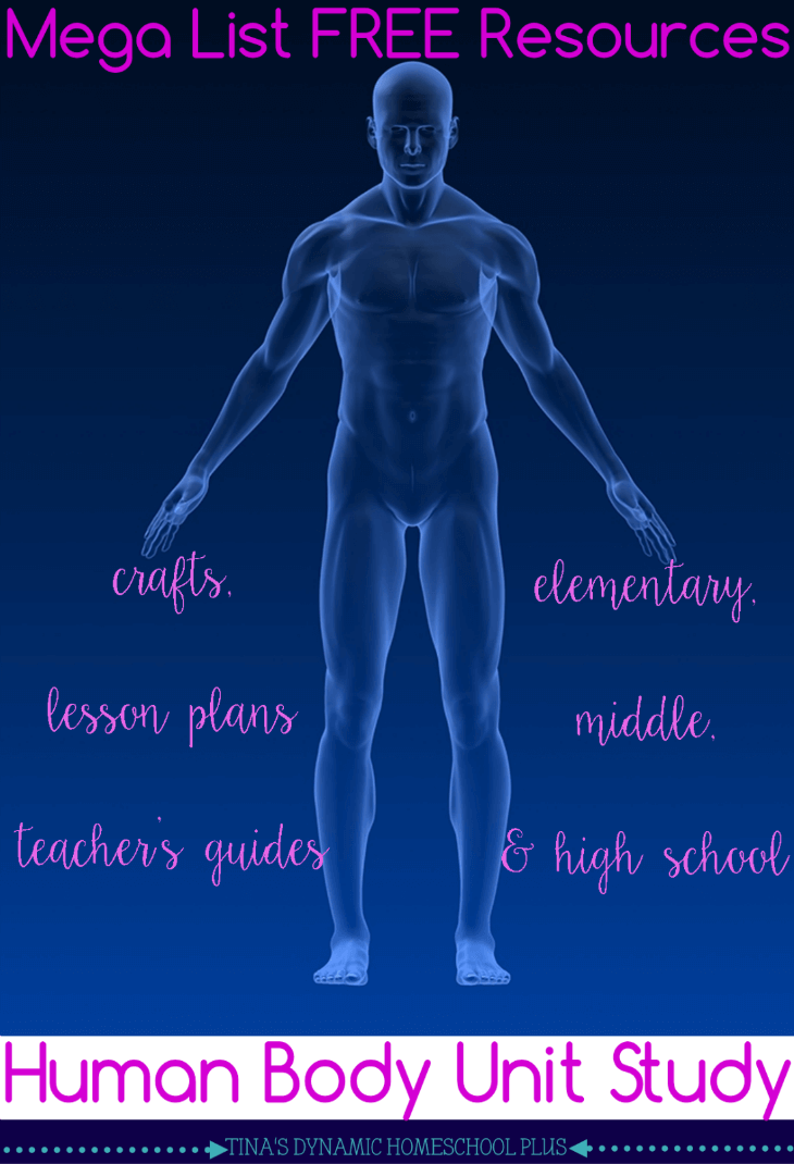 Mega List Free Resources for Human Body Homeschool Unit Study Crafts