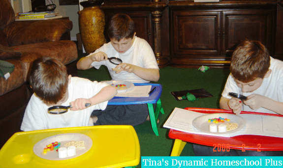 homeschooling in tiny homeschool areas