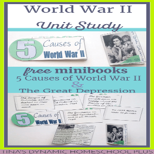 an analysis of the different causes of world war two Margaret macmillan: the second world war caused unprecedented hardship, but it also accelerated change however, 1945 was different, so different that it has been called year zero two powers, so great that the new term superpower had to be coined for them, dominated the world in 1945.